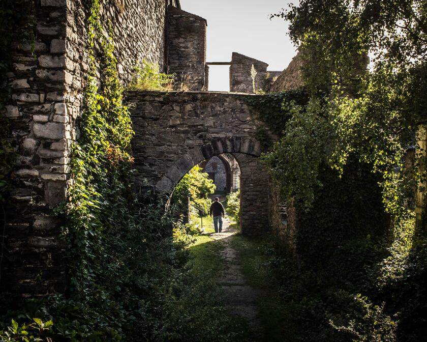 St Bavo's Abbey, a hidden oasis