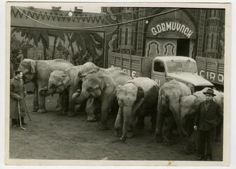 Circus Onderweg