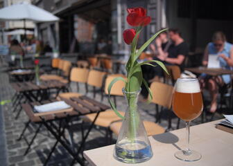 A glass of beer on a table on the sunny terrace