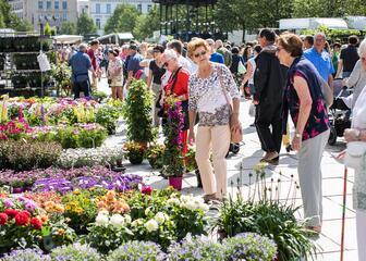 Wandelroute zondagse markten