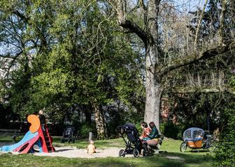 Play ground for children