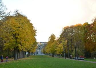 Koning Albertpark (Zuidpark)