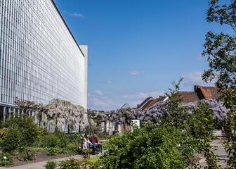 Jardin Botanique de l'Université de Gand